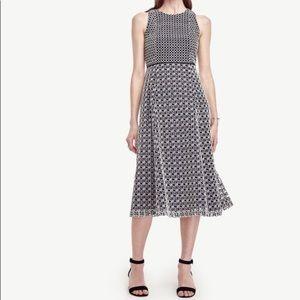 Ann Taylor Petite Blue/White Eyelet Dress